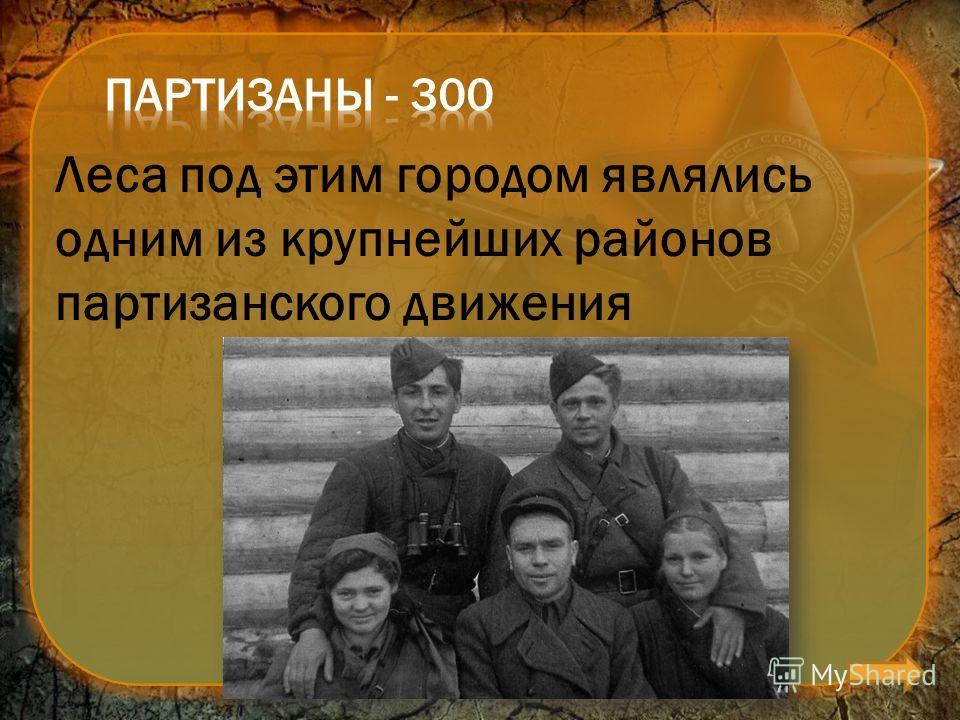 Леса под этим городом являлись одним из крупнейших районов партизанского движения