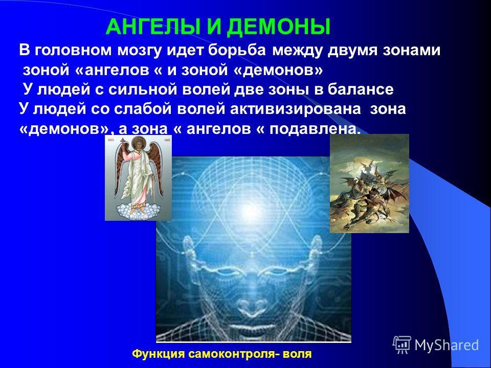 АНГЕЛЫ И ДЕМОНЫ В головном мозгу идет борьба между двумя зонами зоной « ангелов « и зоной « демонов » У людей с сильной волей две зоны в балансе У людей со слабой волей активизирована зона « демонов », а зона « ангелов « подавлена. Функция самоконтро