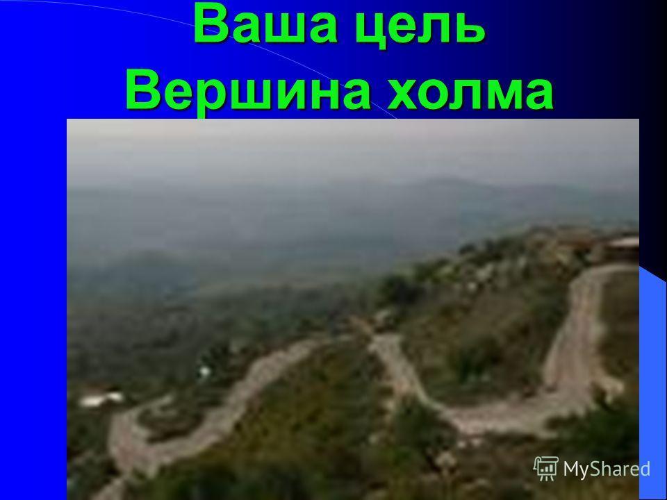 Ваша цель Вершина холма