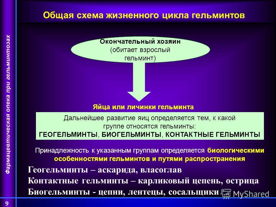 Фармацевтическая опека при гельминтозах 9 Общая схема жизненного цикла гельминтов Окончательный хозяин (обитает взрослый гельминт) Яйца или личинки гельминта Дальнейшее развитие яиц определяется тем, к какой группе относятся гельминты: ГЕОГЕЛЬМИНТЫ,