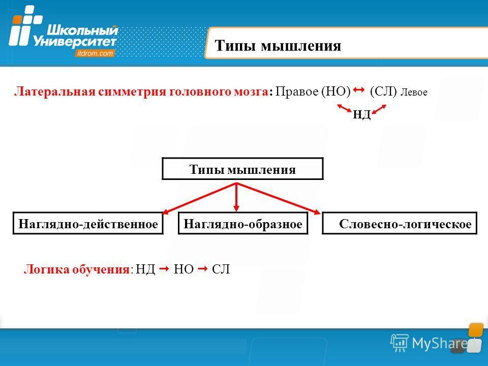 Типы мышления Наглядно-действенное Наглядно-образное Словесно-логическое Логика обучения: НД НО СЛ Латеральная симметрия головного мозга: Правое (НО) (СЛ) Левое НД
