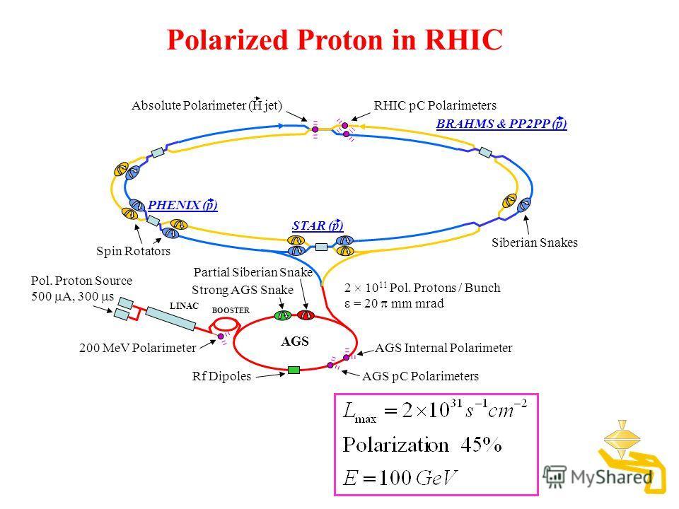 BRAHMS & PP2PP (p) STAR (p) PHENIX (p) AGS LINAC BOOSTER Polarized Proton in RHIC Pol. Proton Source 500 A, 300 s Spin Rotators Partial Siberian Snake Siberian Snakes 200 MeV Polarimeter AGS Internal Polarimeter Rf Dipoles RHIC pC Polarimeters Absolu