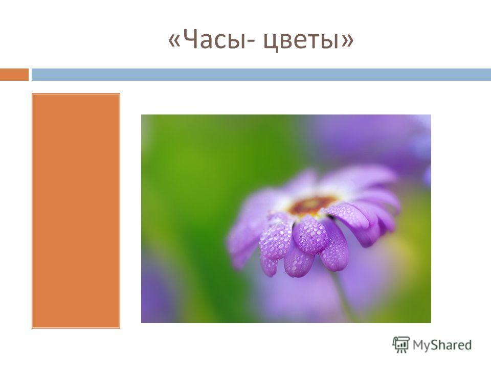 « Часы - цветы »