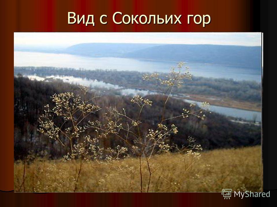 Вид с Сокольих гор