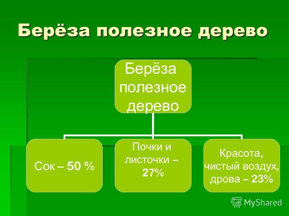 Берёза полезное дерево Берёза полезное дерево Сок – 50 % Почки и листочки – 27% Красота, чистый воздух, дрова – 23%