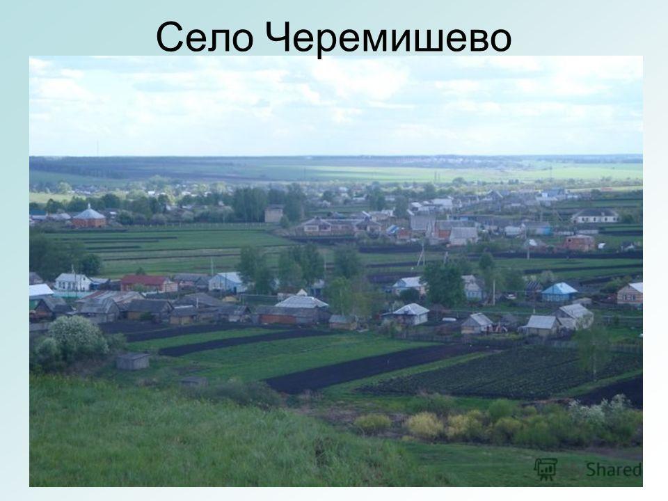 Село Черемишево