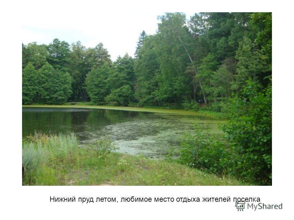 Нижний пруд летом, любимое место отдыха жителей поселка