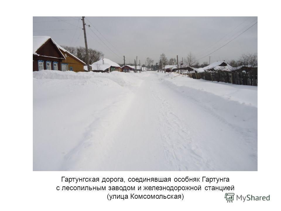 Гартунгская дорога, соединявшая особняк Гартунга с лесопильным заводом и железнодорожной станцией (улица Комсомольская)