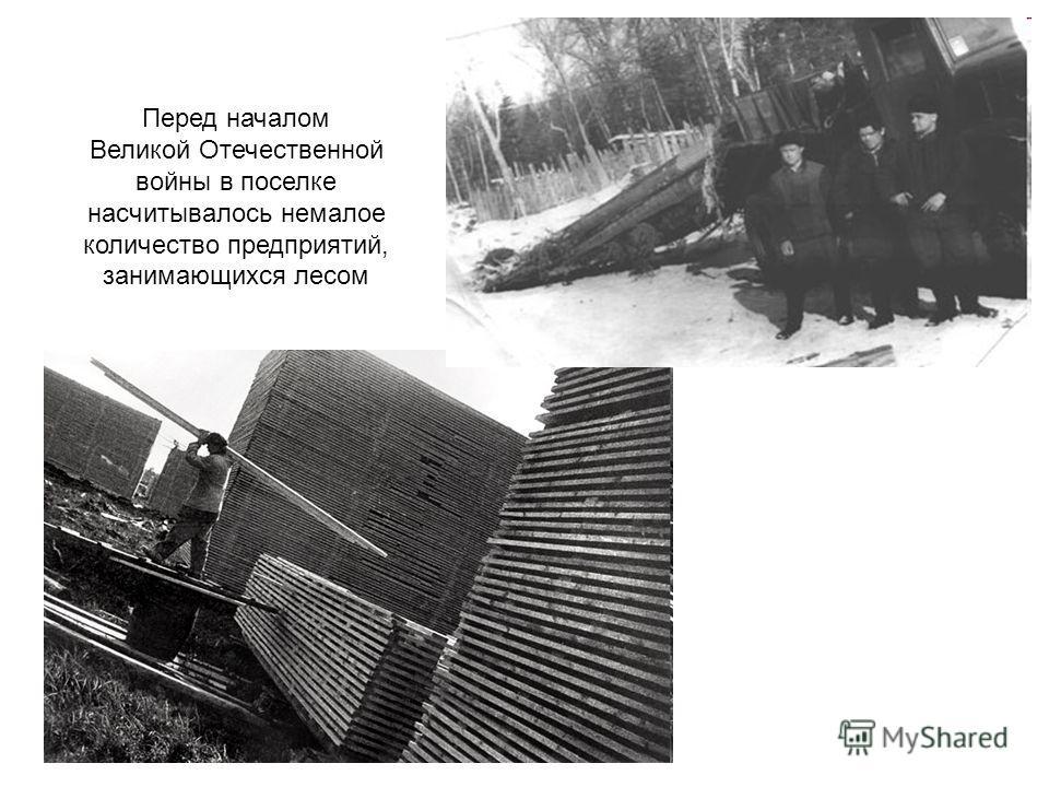 Перед началом Великой Отечественной войны в поселке насчитывалось немалое количество предприятий, занимающихся лесом