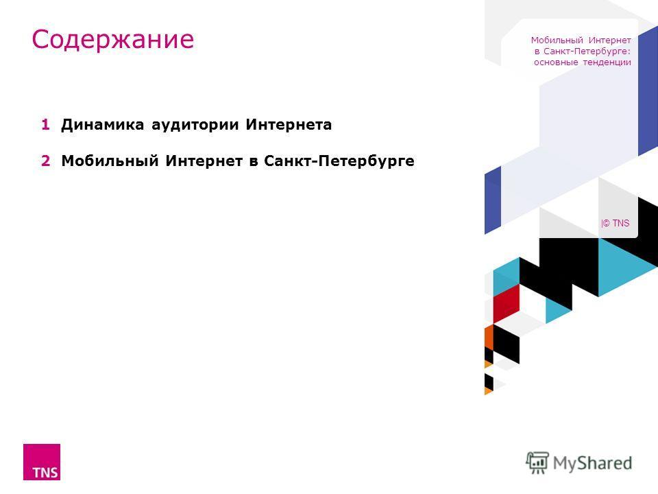 1 Динамика аудитории Интернета 2 Мобильный Интернет в Санкт-Петербурге Содержание |© TNS Мобильный Интернет в Санкт-Петербурге: основные тенденции