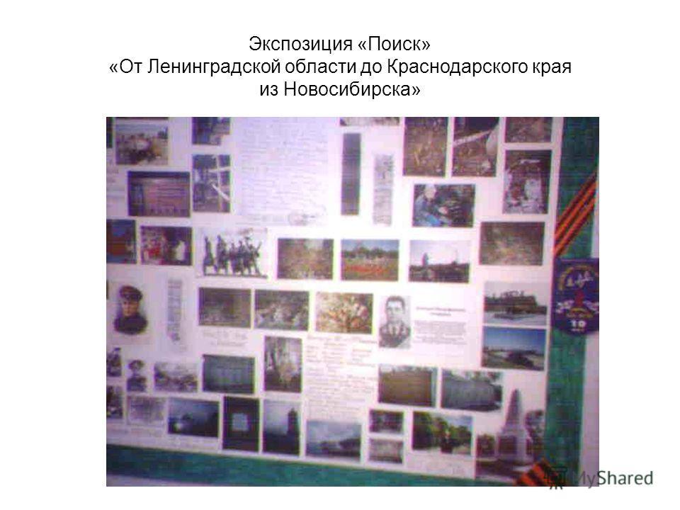 Экспозиция «Поиск» «От Ленинградской области до Краснодарского края из Новосибирска»