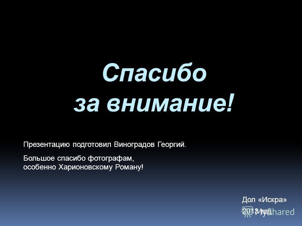 Спасибо за внимание! Дол «Искра» 2013 год Презентацию подготовил Виноградов Георгий. Большое спасибо фотографам, особенно Харионовскому Роману!