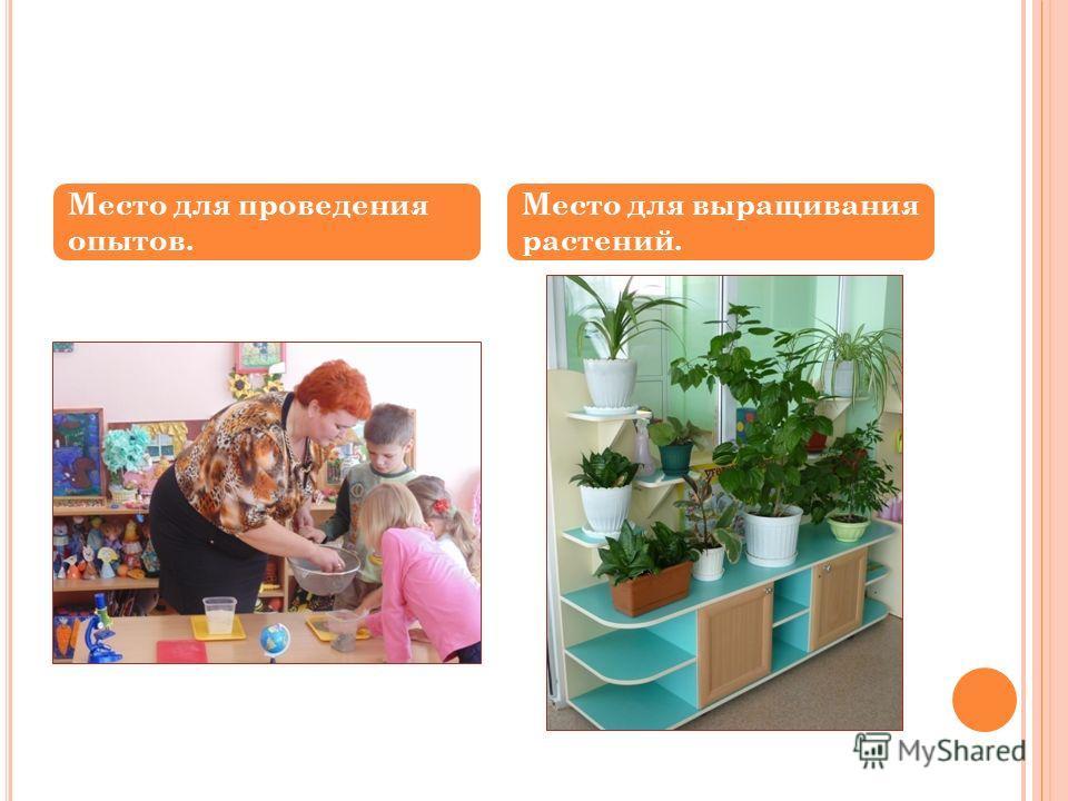 Место для проведения опытов. Место для выращивания растений.