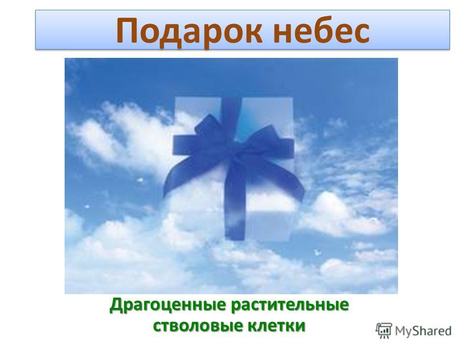 Подарок небес Драгоценные растительные стволовые клетки