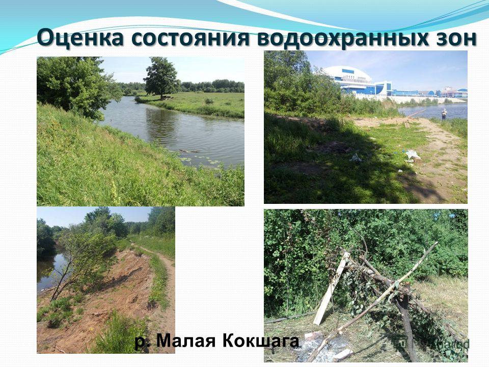 Оценка состояния водоохранных зон р. Малая Кокшага