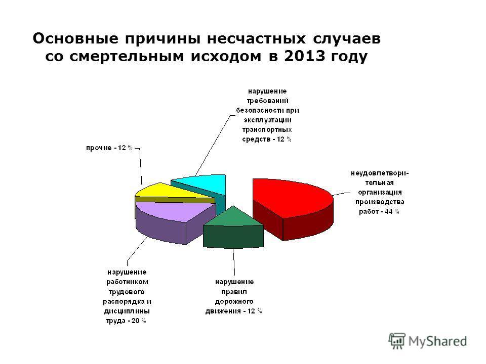 Основные причины несчастных случаев со смертельным исходом в 2013 году