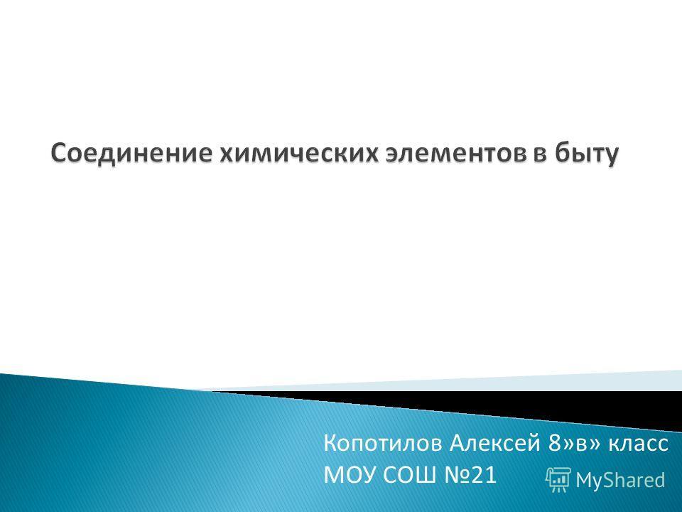 Копотилов Алексей 8»в» класс МОУ СОШ 21