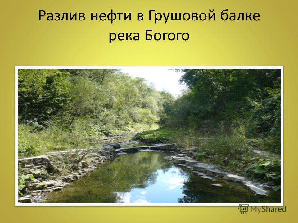 Разлив нефти в Грушовой балке река Богого