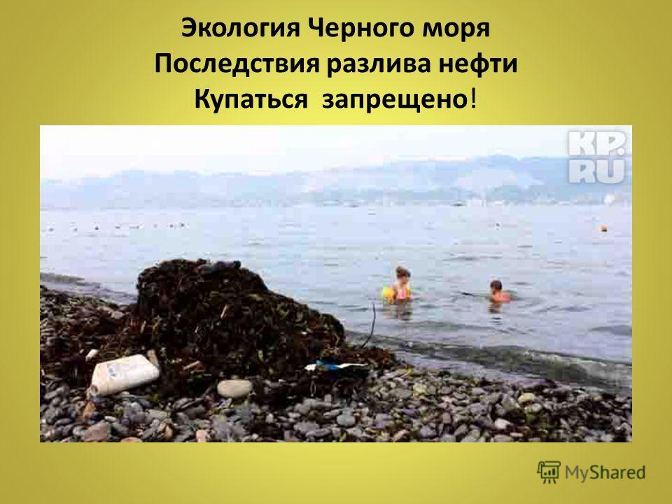 Экология Черного моря Последствия разлива нефти Купаться запрещено!