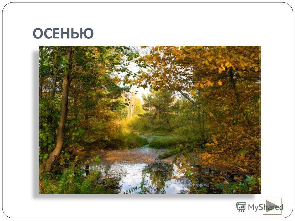 ТРЕНАЖЁР ПО ЧТЕНИЮ КОРОТКИЕ РАССКАЗЫ Осень