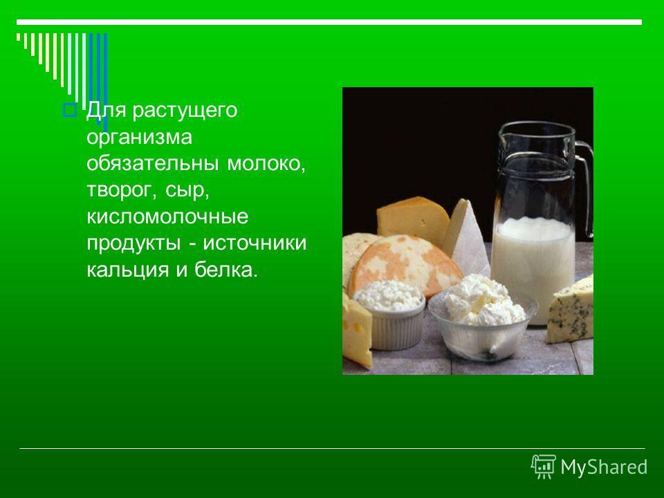 Для растущего организма обязательны молоко, творог, сыр, кисломолочные продукты - источники кальция и белка.