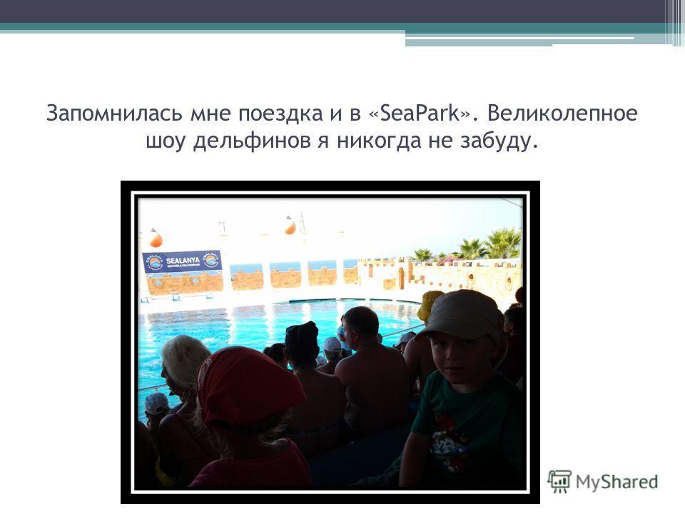 Запомнилась мне поездка и в «SeaPark». Великолепное шоу дельфинов я никогда не забуду.