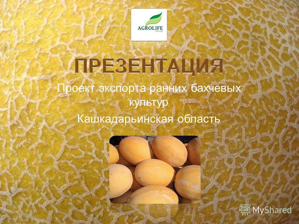 Проект экспорта ранних бахчевых культур Кашкадарьинская область