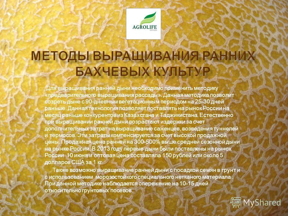 Для выращивания ранней дыни необходимо применить методику «предварительного выращивания рассады». Данная методика позволит созреть дыне с 90-дневным вегетационным периодом на 25-30 дней раньше. Данная технология позволяет поставлять на рынок России н