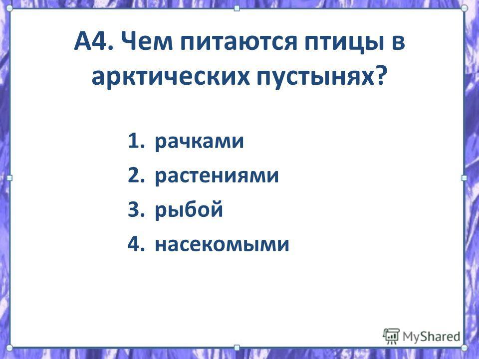 А4. Чем питаются птицы в арктических пустынях? 1. рачками 2. растениями 3. рыбой 4.насекомыми