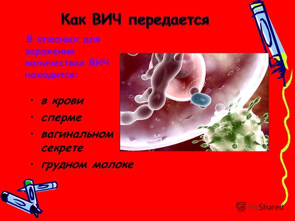 в крови сперме вагинальном секрете грудном молоке Факторы передачи В опасных для заражения количествах ВИЧ находится: