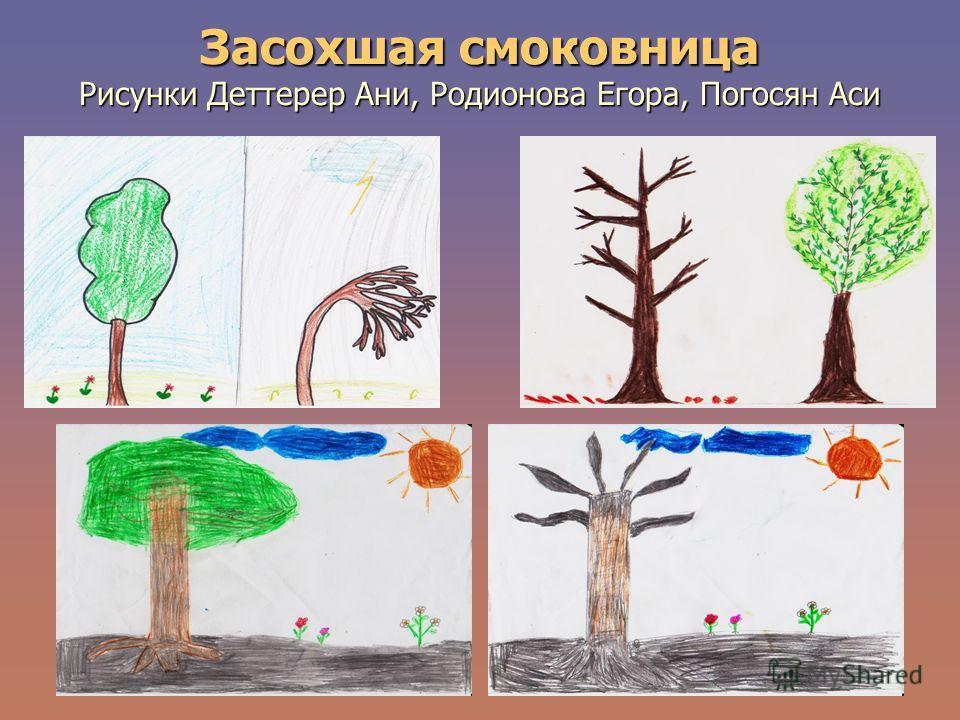 Засохшая смоковница Рисунки Деттерер Ани, Родионова Егора, Погосян Аси