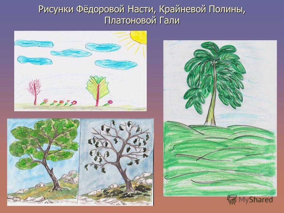 Рисунки Фёдоровой Насти, Крайневой Полины, Платоновой Гали