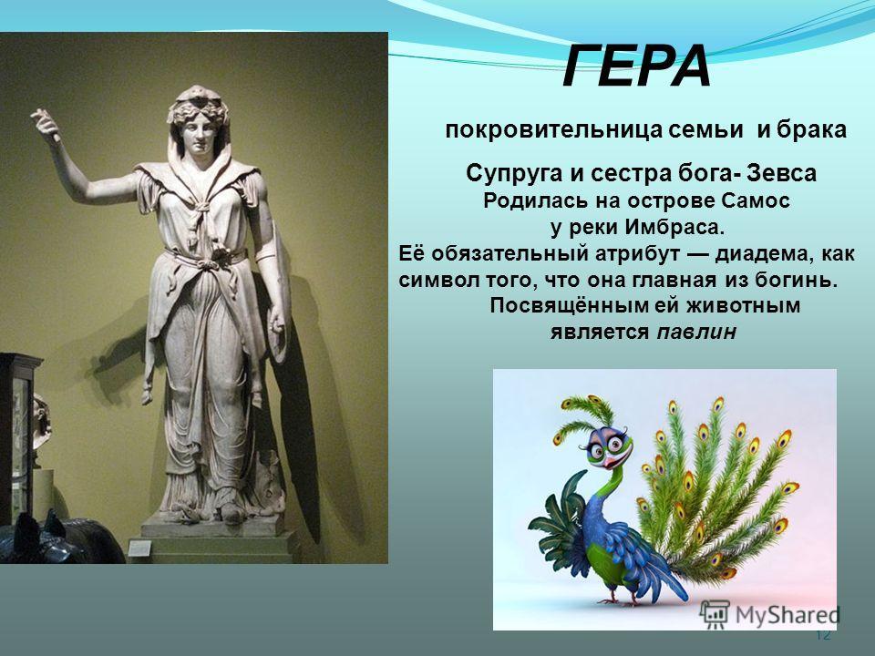 12 ГЕРА покровительница семьи и брака Супруга и сестра бога- Зевса Родилась на острове Самос у реки Имбраса. Её обязательный атрибут диадема, как символ того, что она главная из богинь. Посвящённым ей животным является павлин