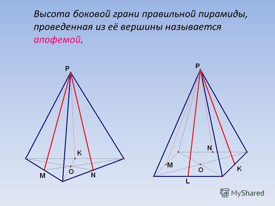 Высота боковой грани правильной пирамиды, проведенная из её вершины называется апофемой.