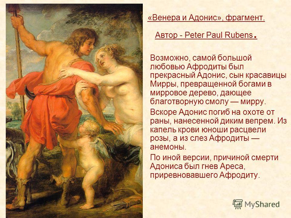 «Венера и Адонис», фрагмент. Автор - Peter Paul Rubens. Возможно, самой большой любовью Афродиты был прекрасный Адонис, сын красавицы Мирры, превращенной богами в мирровое дерево, дающее благотворную смолу мирру. Вскоре Адонис погиб на охоте от раны,