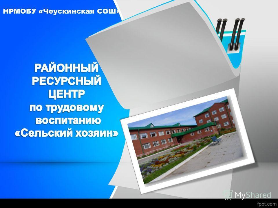 НРМОБУ «Чеускинская СОШ»