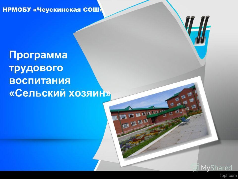 Программа трудового воспитания «Сельский хозяин» НРМОБУ «Чеускинская СОШ»