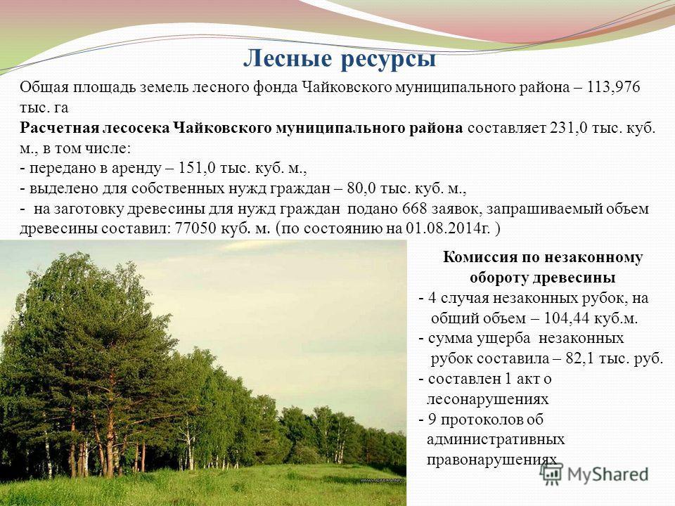 Лесные ресурсы Общая площадь земель лесного фонда Чайковского муниципального района – 113,976 тыс. га Расчетная лесосека Чайковского муниципального района составляет 231,0 тыс. куб. м., в том числе: - передано в аренду – 151,0 тыс. куб. м., - выделен