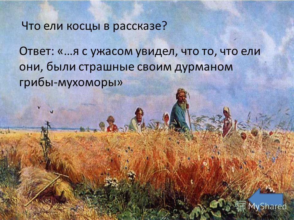 Что ели косцы в рассказе? Ответ: «…я с ужасом увидел, что то, что ели они, были страшные своим дурманом грибы-мухоморы» 4