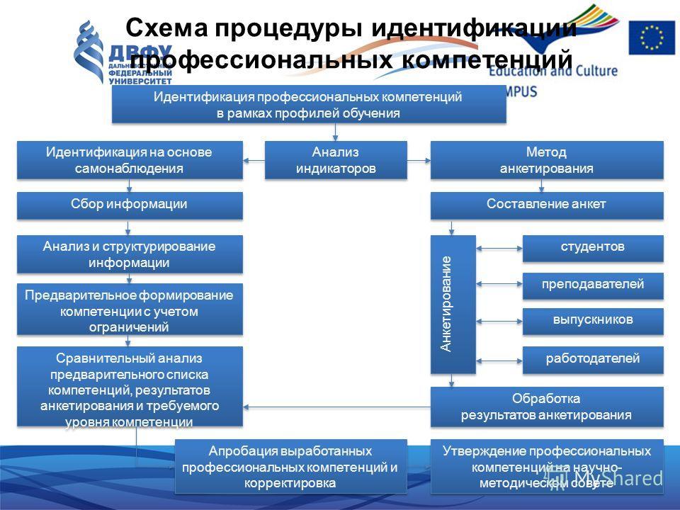 Схема процедуры идентификации профессиональных компетенций Идентификация профессиональных компетенций в рамках профилей обучения Идентификация профессиональных компетенций в рамках профилей обучения Анализ индикаторов Анализ индикаторов Идентификация