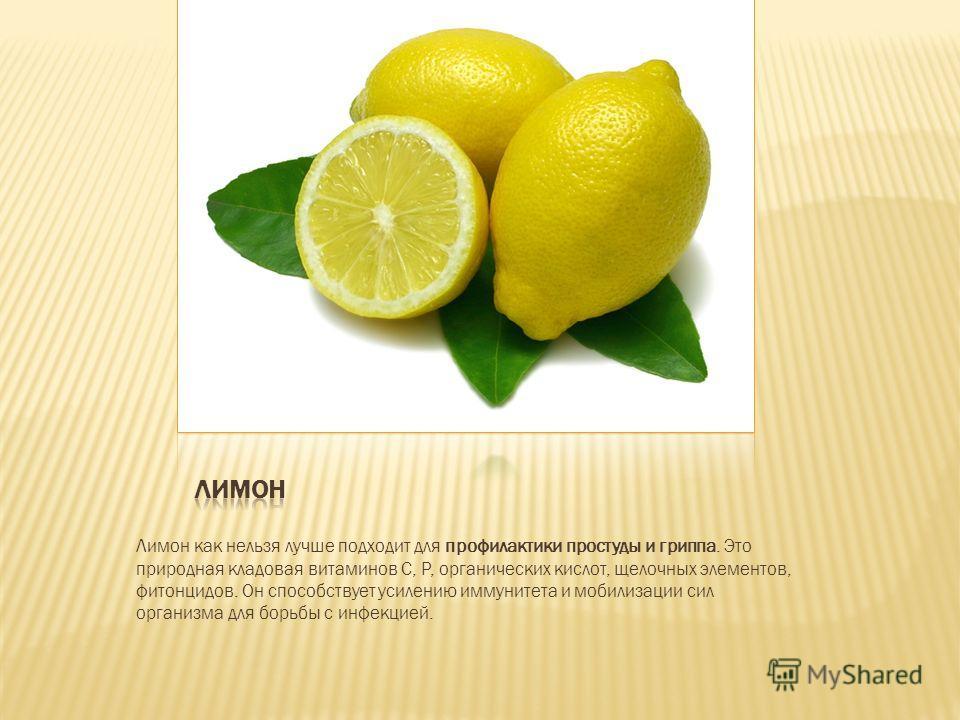 Лимон как нельзя лучше подходит для профилактики простуды и гриппа. Это природная кладовая витаминов С, Р, органических кислот, щелочных элементов, фитонцидов. Он способствует усилению иммунитета и мобилизации сил организма для борьбы с инфекцией.
