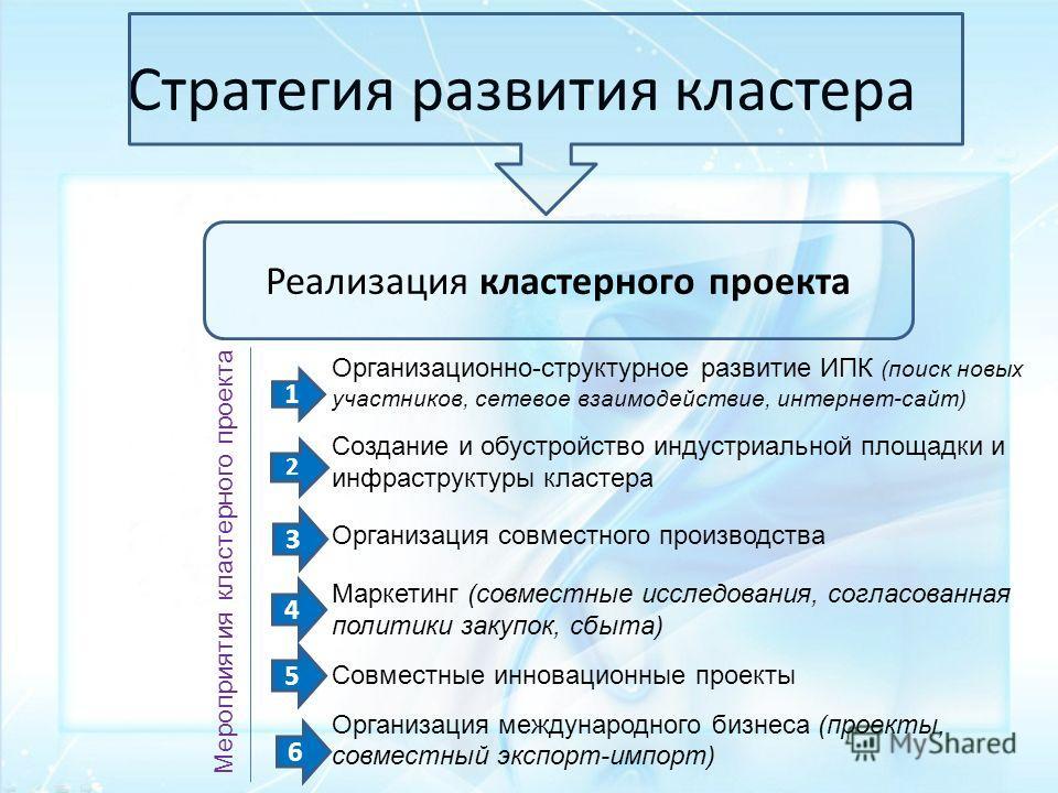 Стратегия развития кластера Реализация кластерного проекта Организационно-структурное развитие ИПК (поиск новых участников, сетевое взаимодействие, интернет-сайт) Создание и обустройство индустриальной площадки и инфраструктуры кластера Организация с