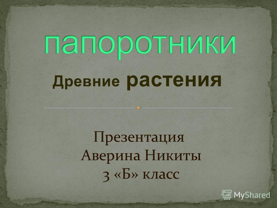 Древние растения Презентация Аверина Никиты 3 «Б» класс