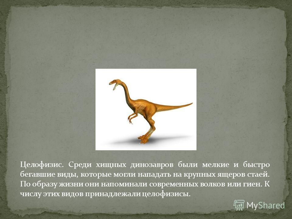 Целофизис. Среди хищных динозавров были мелкие и быстро бегавшие виды, которые могли нападать на крупных ящеров стаей. По образу жизни они напоминали современных волков или гиен. К числу этих видов принадлежали целофизисы.