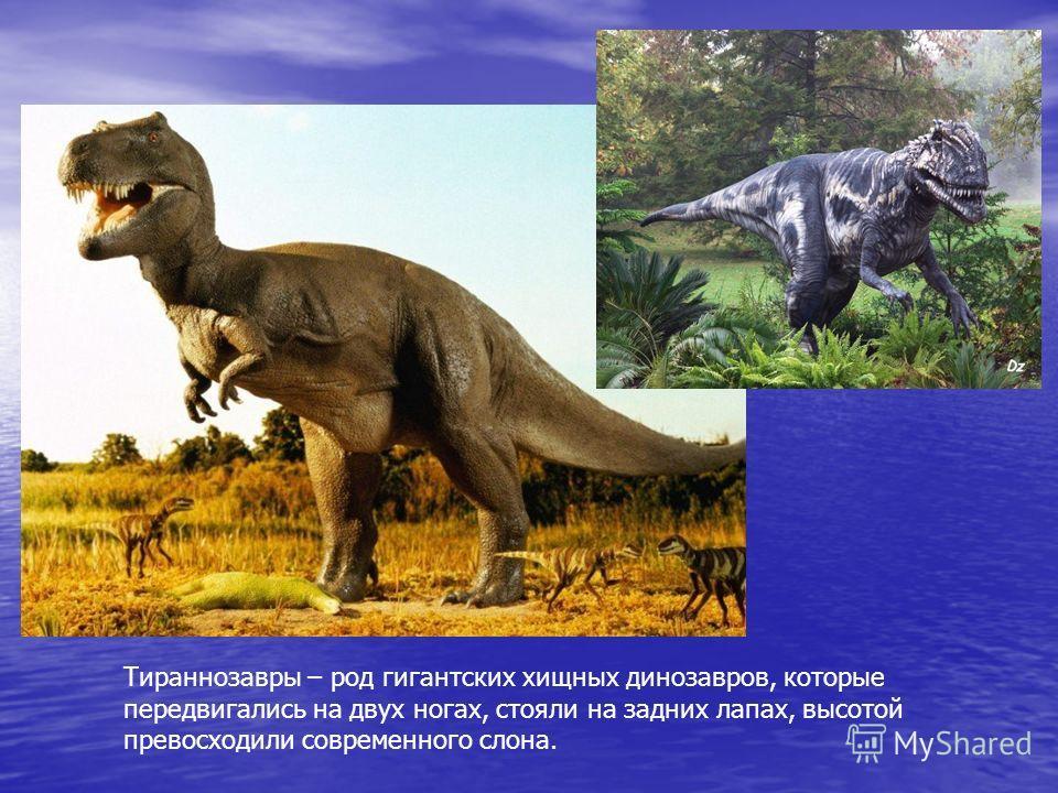 Тираннозавры – род гигантских хищных динозавров, которые передвигались на двух ногах, стояли на задних лапах, высотой превосходили современного слона.