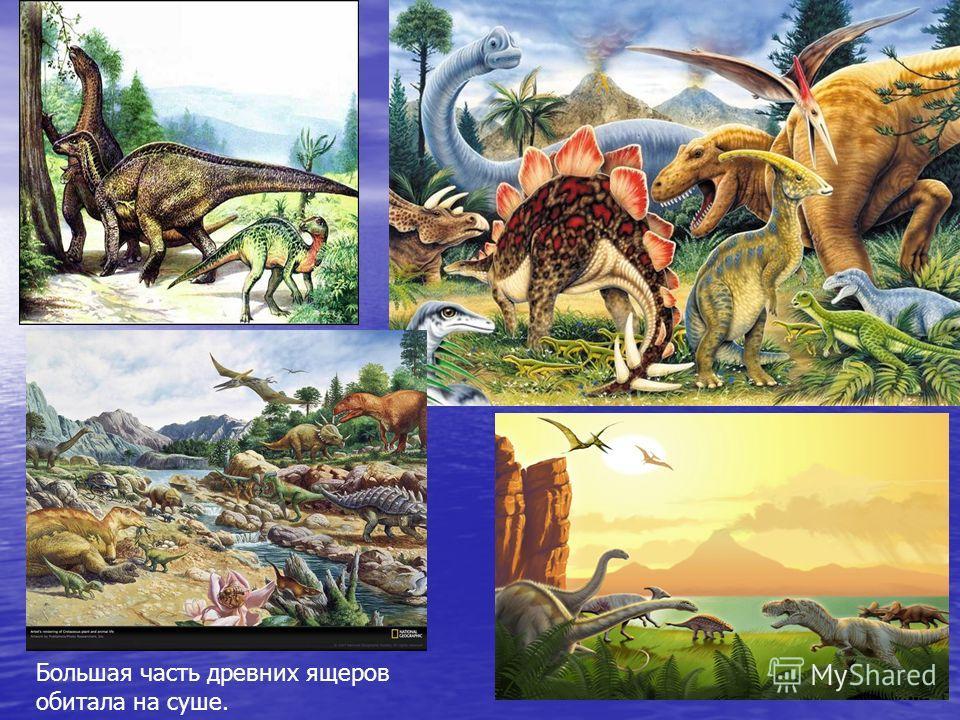 Большая часть древних ящеров обитала на суше.