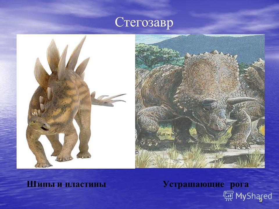 9 Шипы и пластины Устрашающие рога Стегозавр