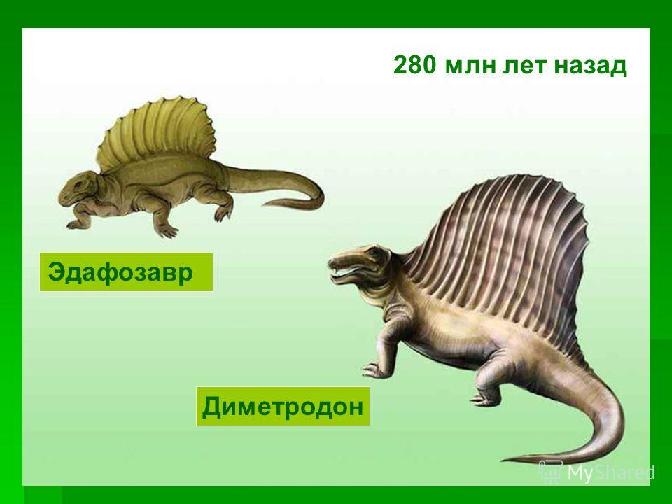 Эдафозавр Диметродон 280 млн лет назад