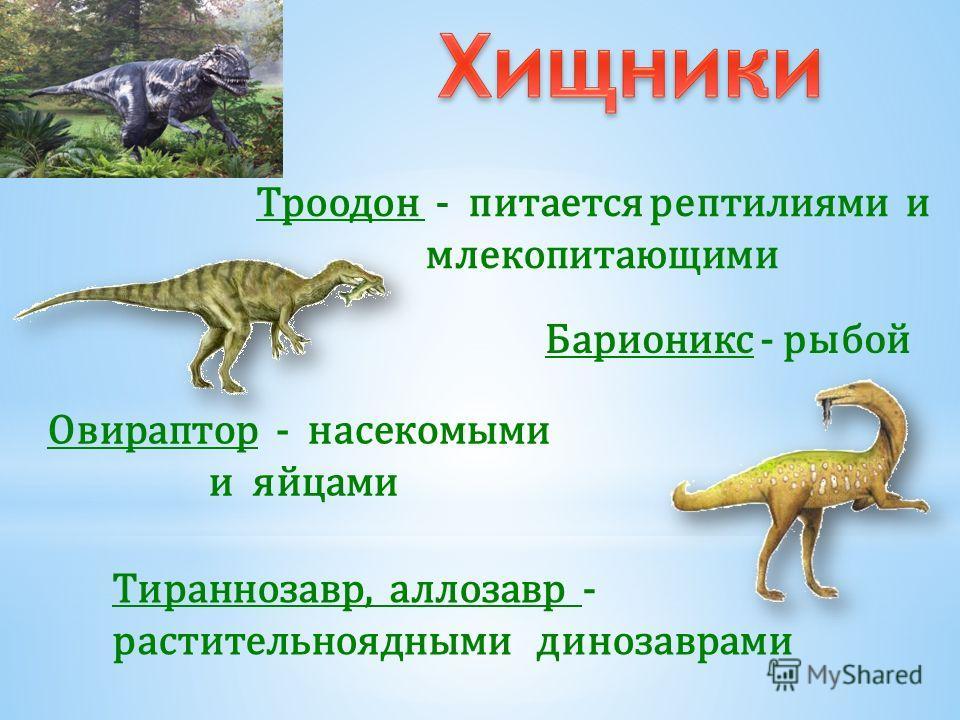 Зауроподы Анкилозавры Стегозавры Цератопсы Папоротники и хвощи Листья, побеги и листва цветковых, Шишки хвойных и листва