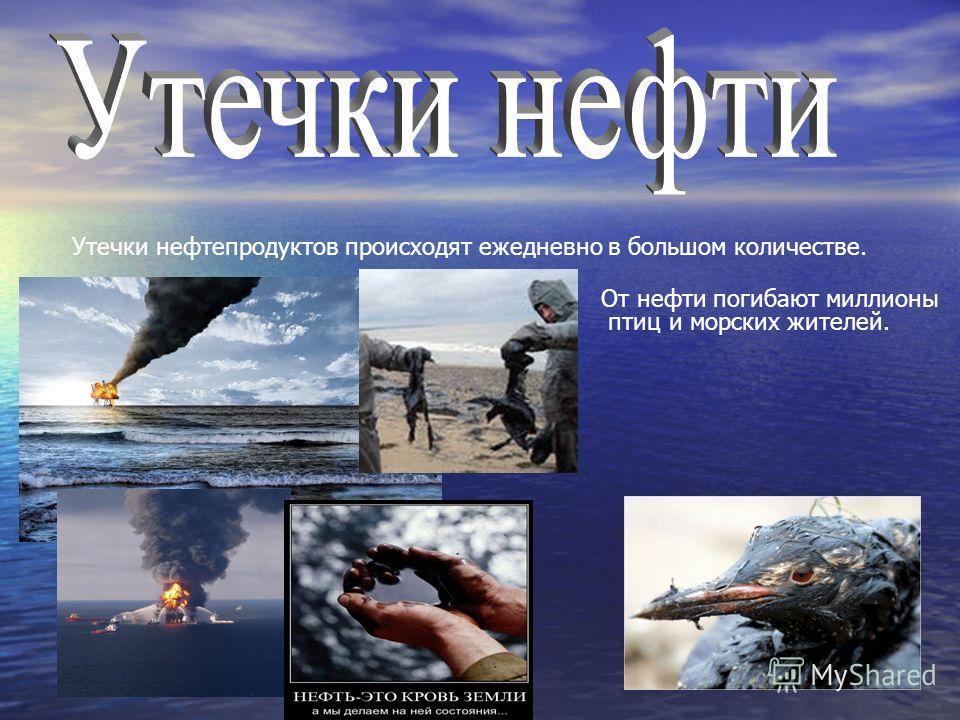 Утечки нефтепродуктов происходят ежедневно в большом количестве. От нефти погибают миллионы птици морских жителей.